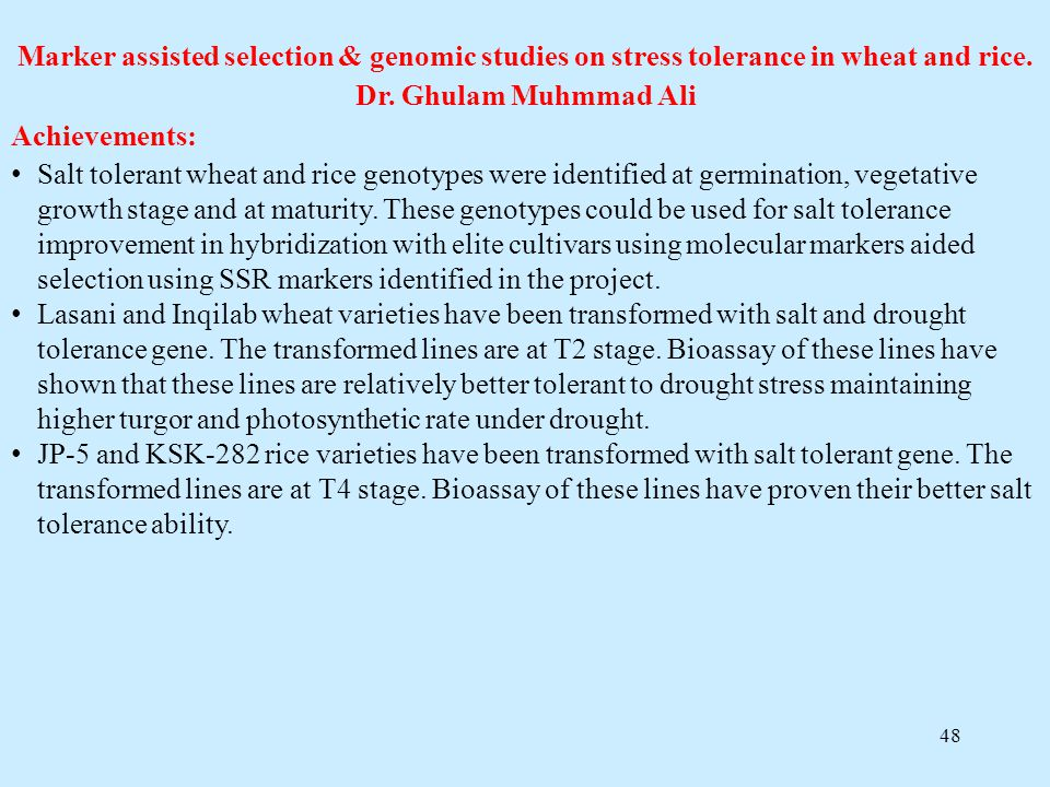 48 Marker assisted selection & genomic studies on stress tolerance in wheat and rice. Dr. Ghulam Muhmmad Ali Achievements: Salt tolerant wheat and ric