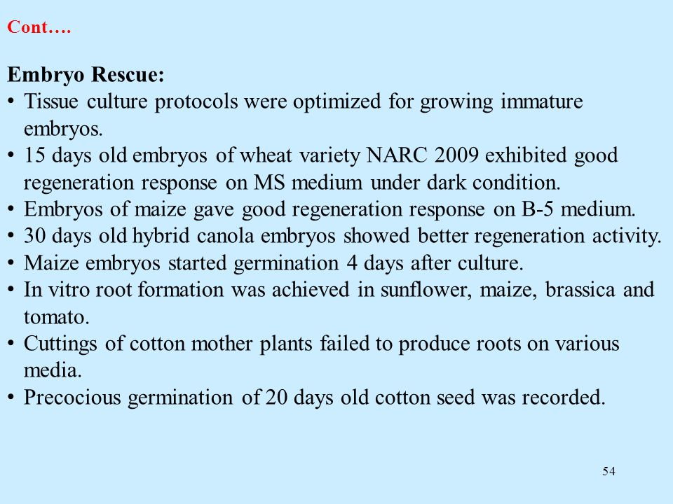 54 Cont…. Embryo Rescue: Tissue culture protocols were optimized for growing immature embryos. 15 days old embryos of wheat variety NARC 2009 exhibite
