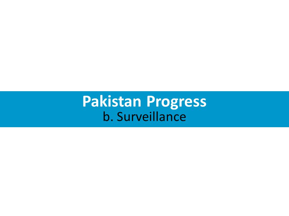 Pakistan Progress b. Surveillance