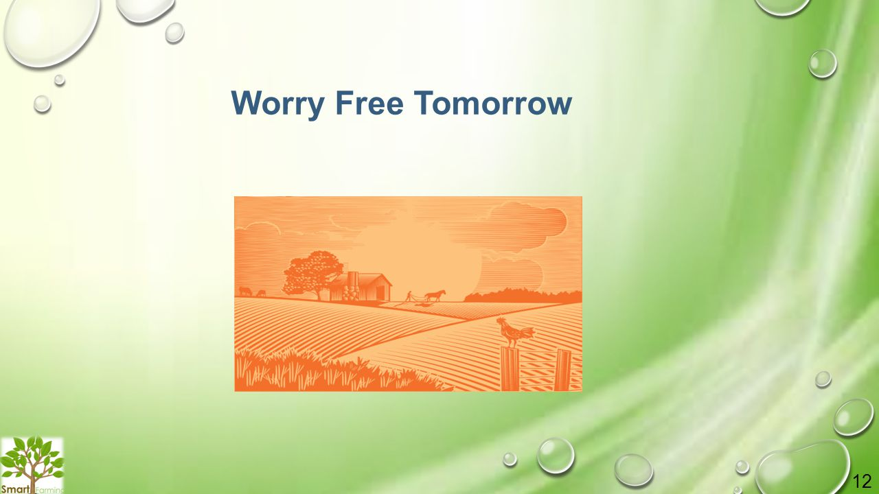 Worry Free Tomorrow 12