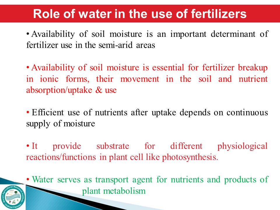 Role of water in the use of fertilizers Availability of soil moisture is an important determinant of fertilizer use in the semi-arid areas Availabilit