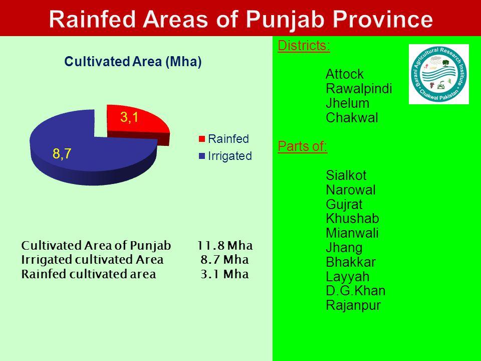 4 Districts: Attock Rawalpindi Jhelum Chakwal Parts of: Sialkot Narowal Gujrat Khushab Mianwali Jhang Bhakkar Layyah D.G.Khan Rajanpur Cultivated Area of Punjab 11.8 Mha Irrigated cultivated Area 8.7 Mha Rainfed cultivated area 3.1 Mha