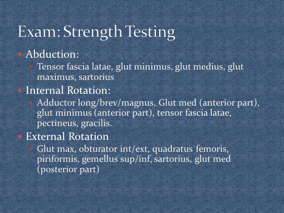 Abduction: Tensor fascia latae, glut minimus, glut medius, glut maximus, sartorius Internal Rotation: Adductor long/brev/magnus, Glut med (anterior pa