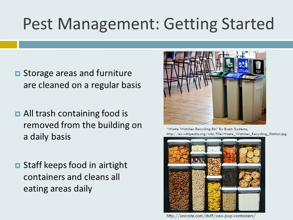Pest Management: Getting Started  Storage areas and furniture are cleaned on a regular basis  All trash containing food is removed from the building on a daily basis  Staff keeps food in airtight containers and cleans all eating areas daily http://uncrate.com/stuff/oxo-pop-containers/ Waste Watcher Recycling Bin By Busch Systems, http://en.wikipedia.org/wiki/File:Waste_Watcher_Recycling_Station.jpg