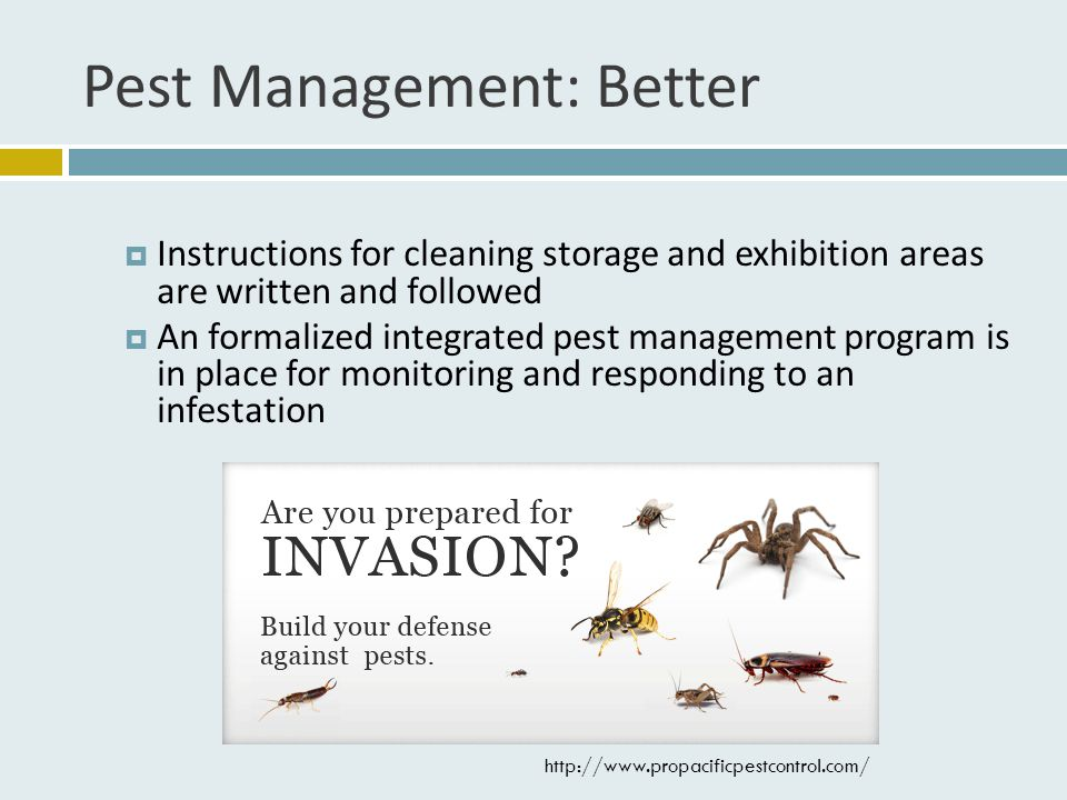 Pest Management: Better  Instructions for cleaning storage and exhibition areas are written and followed  An formalized integrated pest management program is in place for monitoring and responding to an infestation http://www.propacificpestcontrol.com/