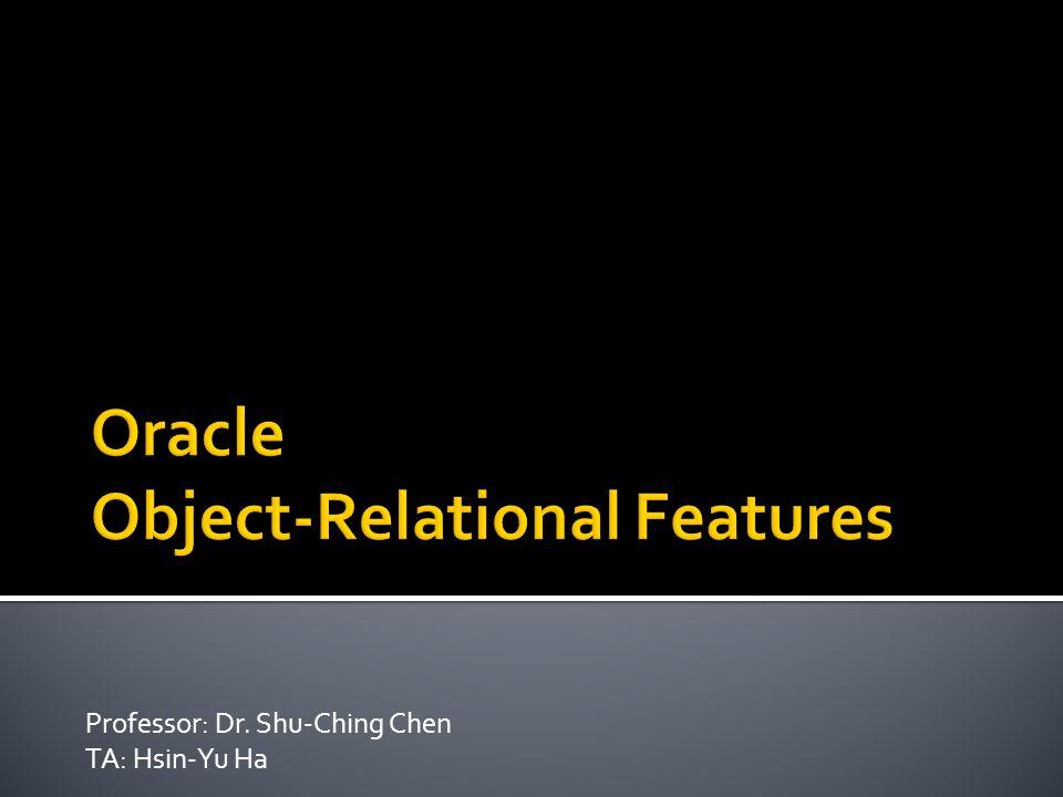 Professor: Dr. Shu-Ching Chen TA: Hsin-Yu Ha