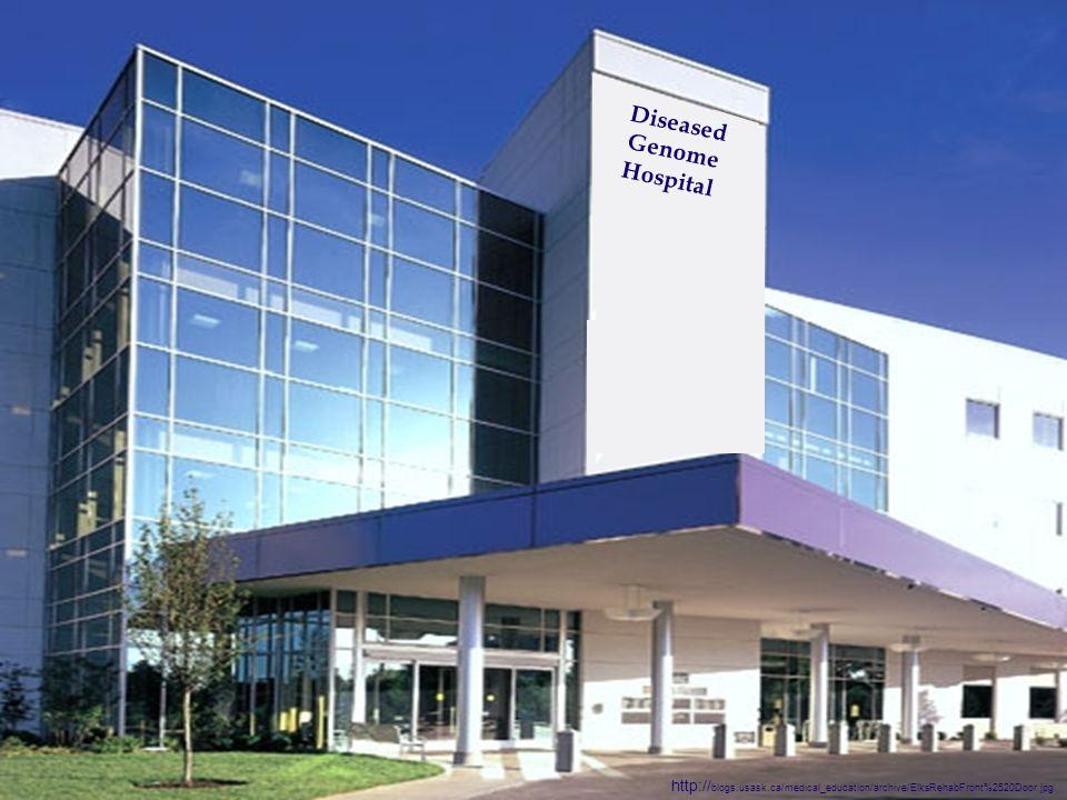 Diseased Genome Hospital http:// blogs.usask.ca/medical_education/archive/ElksRehabFront%2520Door.jpg