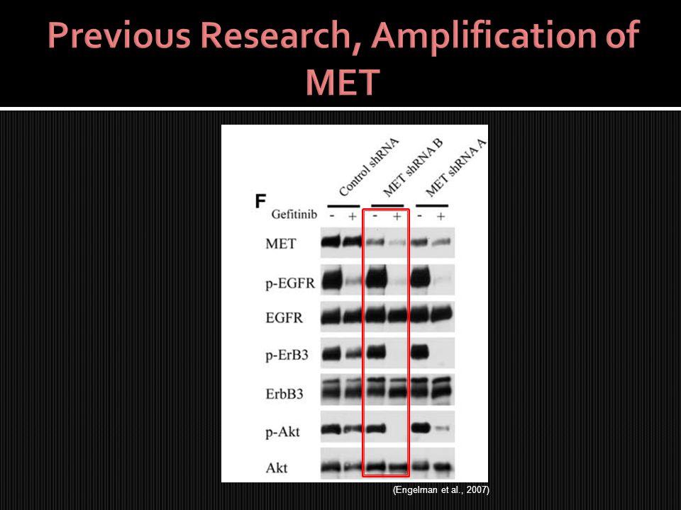 (Engelman et al., 2007)