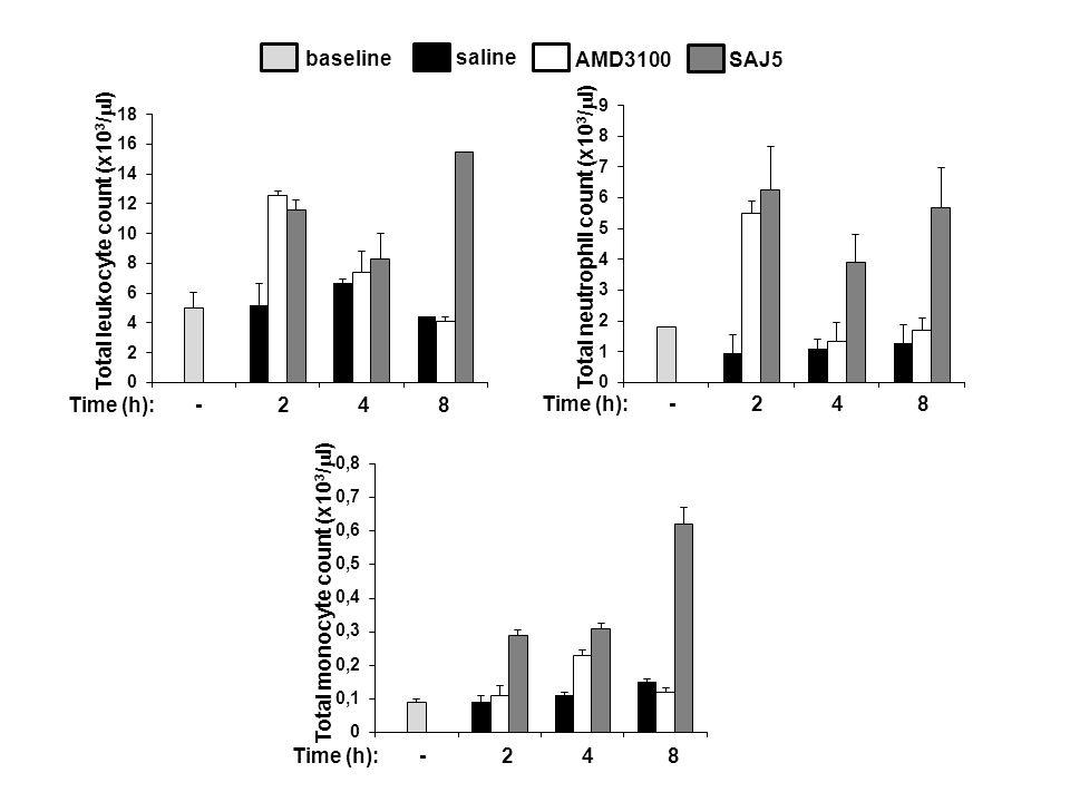 Time (h): - 2 4 8 Total leukocyte count (x10 3 /  l) Total neutrophil count (x10 3 /  l) Total monocyte count (x10 3 /  l) saline AMD3100SAJ5 baseline