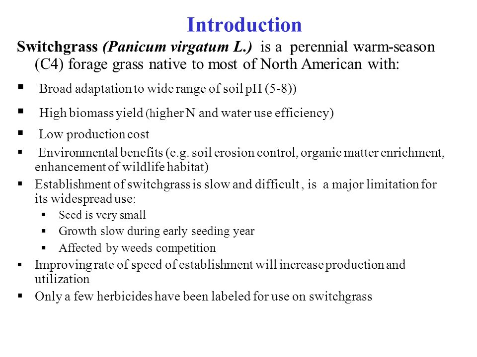 Introduction Switchgrass (Panicum virgatum L.) is a perennial warm-season (C4) forage grass native to most of North American with:  Broad adaptation to wide range of soil pH (5-8))  High biomass yield (h igher N and water use efficiency)  Low production cost  Environmental benefits (e.g.