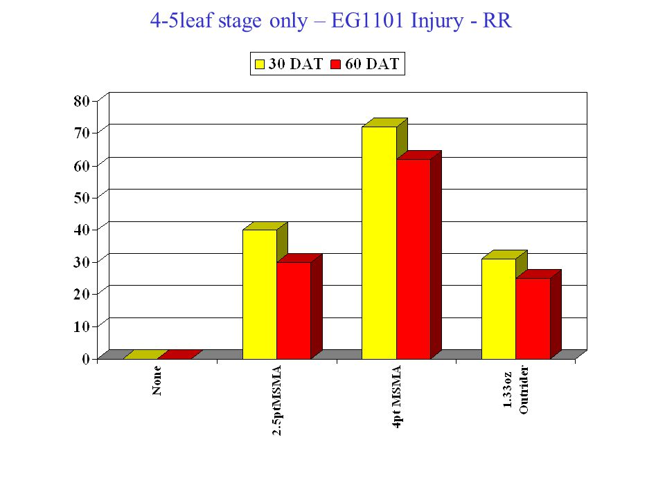 4-5leaf stage only – EG1101 Injury - RR