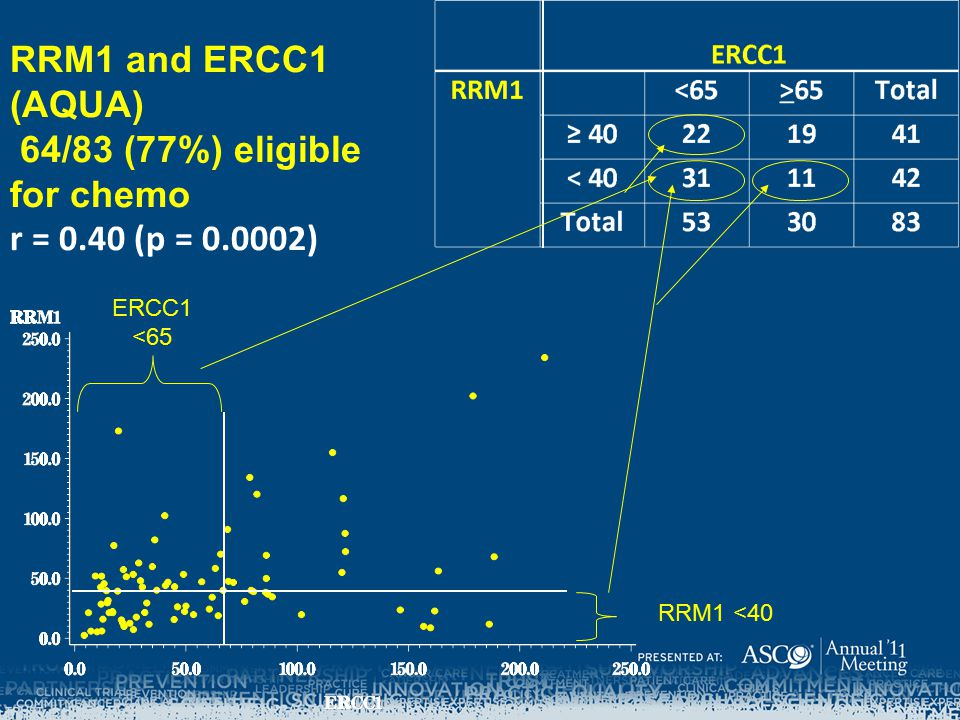 RRM1 and ERCC1 (AQUA) 64/83 (77%) eligible for chemo r = 0.40 (p = 0.0002) ERCC1 <65 RRM1 <40