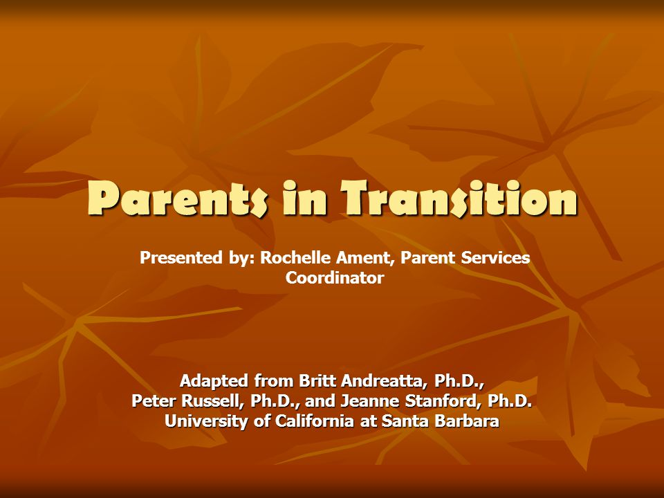 Parents in Transition Adapted from Britt Andreatta, Ph.D., Peter Russell, Ph.D., and Jeanne Stanford, Ph.D.