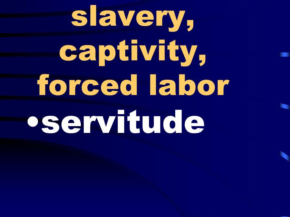 slavery, captivity, forced labor servitude