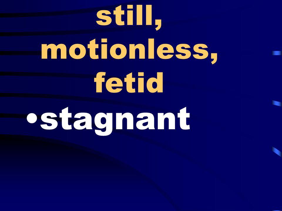 still, motionless, fetid stagnant