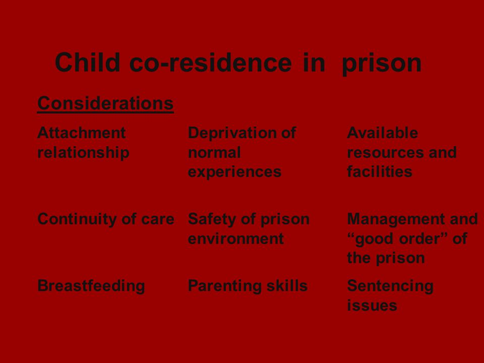 Child co-residence in prison Considerations Attachment relationship Deprivation of normal experiences Available resources and facilities Continuity of careSafety of prison environment Management and good order of the prison BreastfeedingParenting skillsSentencing issues
