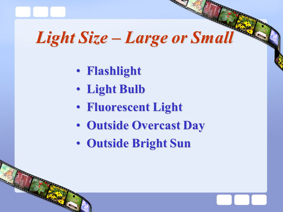 Light Size – Large or Small FlashlightFlashlight Light BulbLight Bulb Fluorescent LightFluorescent Light Outside Overcast DayOutside Overcast Day Outside Bright SunOutside Bright Sun