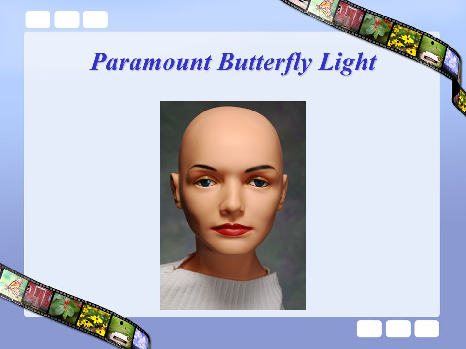 Paramount Butterfly Light