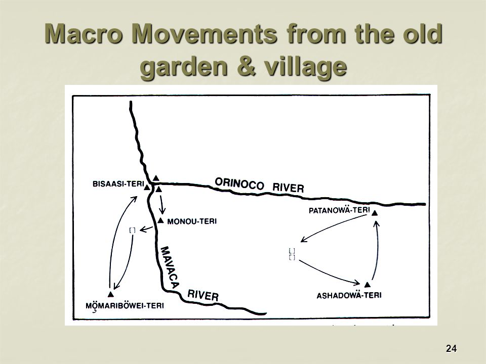 24 Macro Movements from the old garden & village