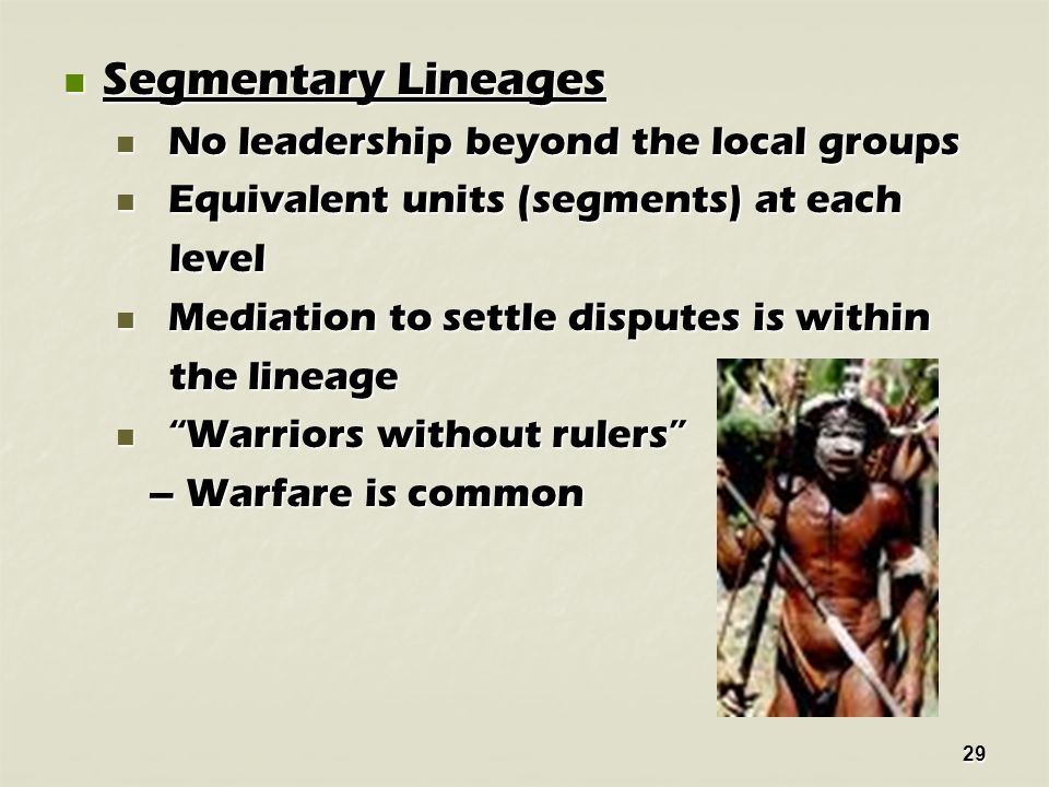 29 Segmentary Lineages Segmentary Lineages No leadership beyond the local groups No leadership beyond the local groups Equivalent units (segments) at each Equivalent units (segments) at each level level Mediation to settle disputes is within Mediation to settle disputes is within the lineage the lineage Warriors without rulers Warriors without rulers – Warfare is common