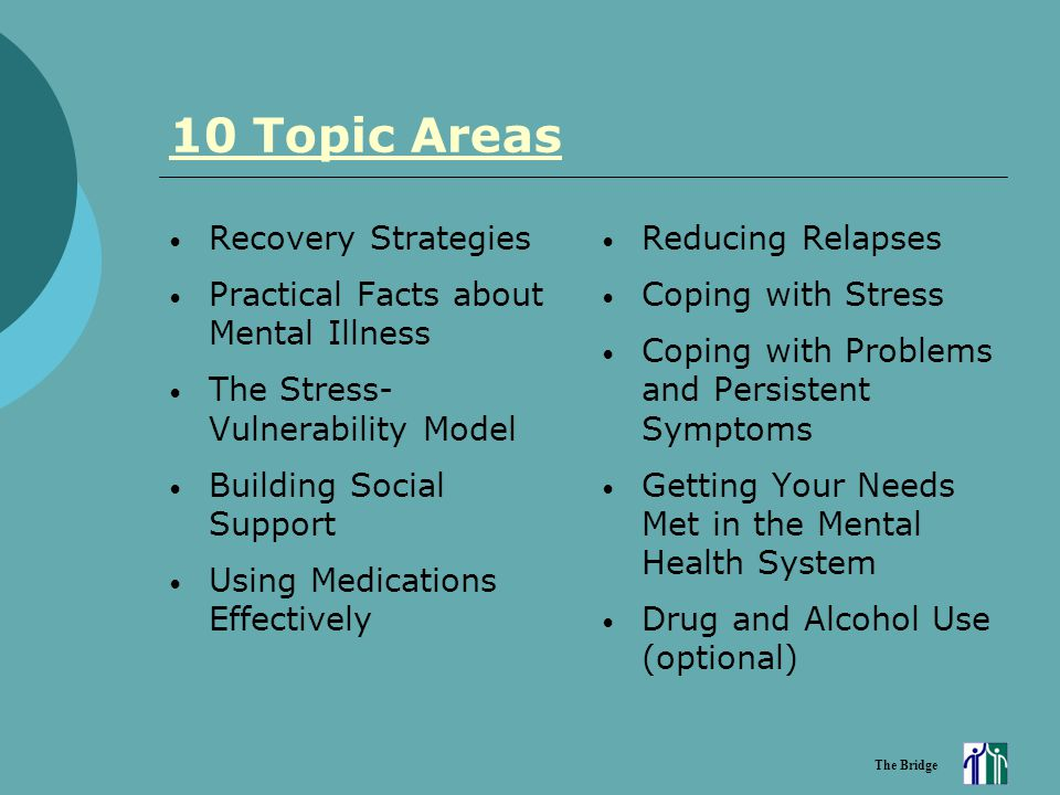 The Bridge 10 Topic Areas Recovery Strategies Practical Facts about Mental Illness The Stress- Vulnerability Model Building Social Support Using Medic