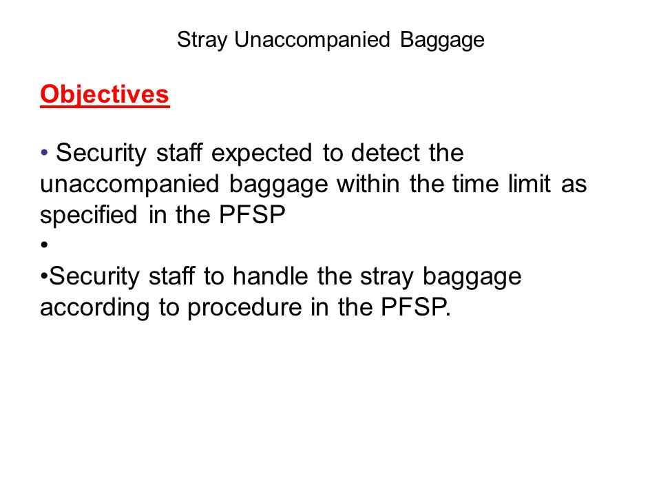 Stray Unaccompanied Baggage Desired Outcomes Security staff will be able to: Detect stray unaccompanied baggage outside the secure area.