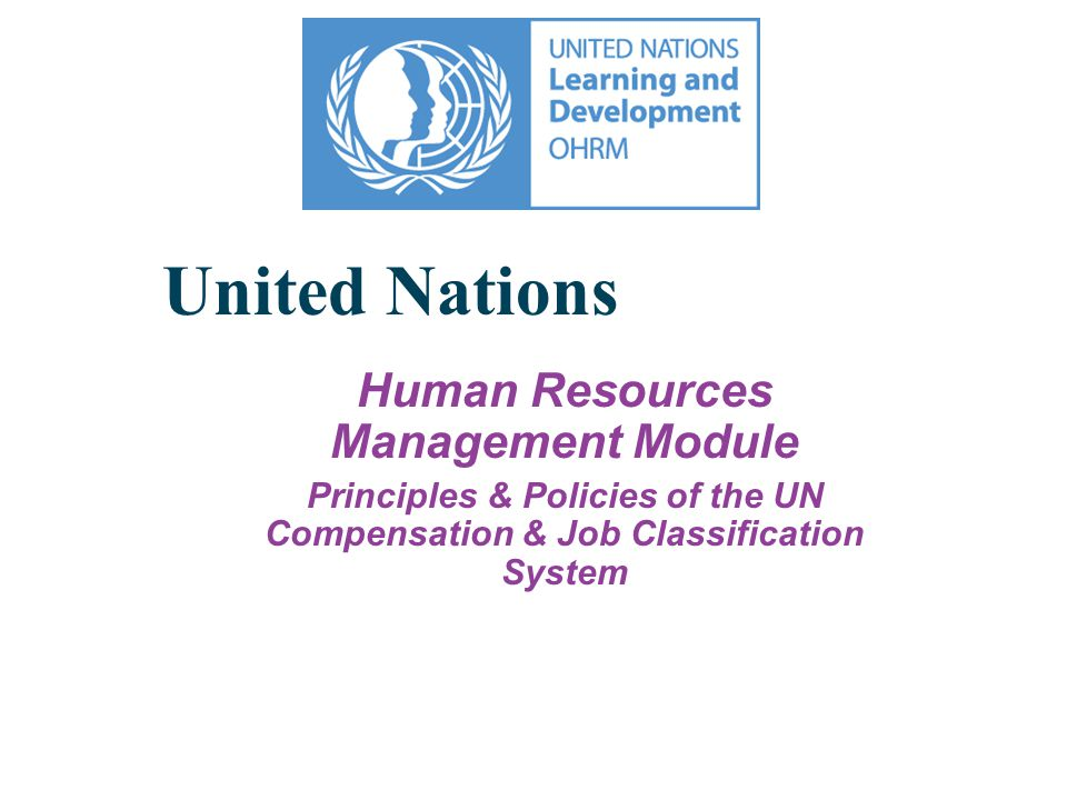 Charter of the United Nations Article 101 3.