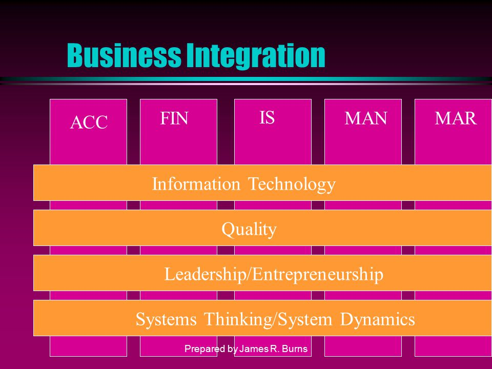 Business Integration ACC FIN IS MANMAR Information Technology Quality Leadership/Entrepreneurship Systems Thinking/System Dynamics Prepared by James R