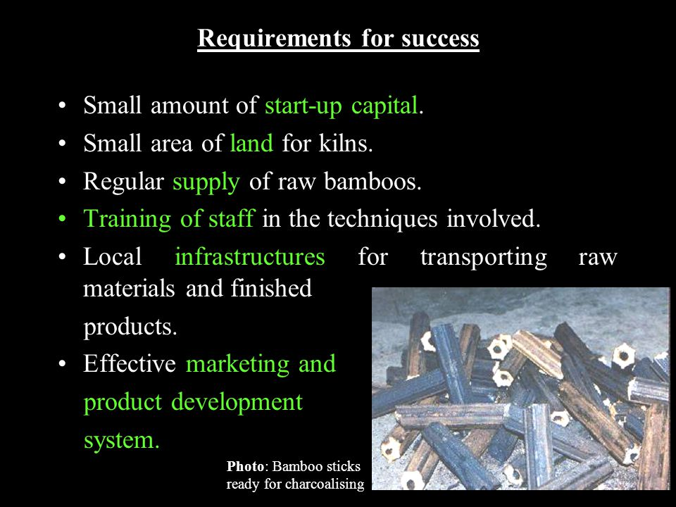 Requirements for success Small amount of start-up capital.