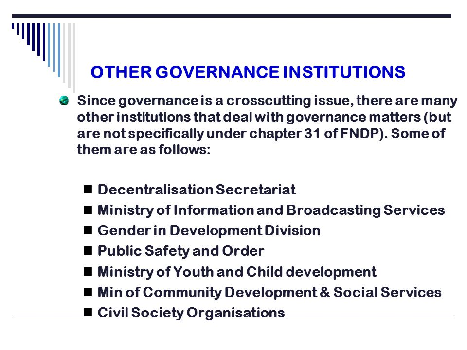 OTHER GOVERNANCE INSTITUTIONS Since governance is a crosscutting issue, there are many other institutions that deal with governance matters (but are not specifically under chapter 31 of FNDP).