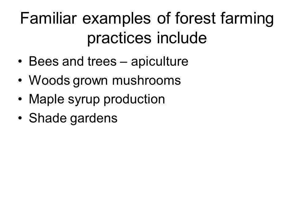 Why Forest Farming.