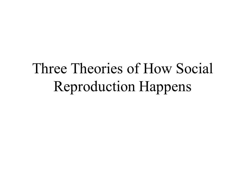 Three Theories of How Social Reproduction Happens