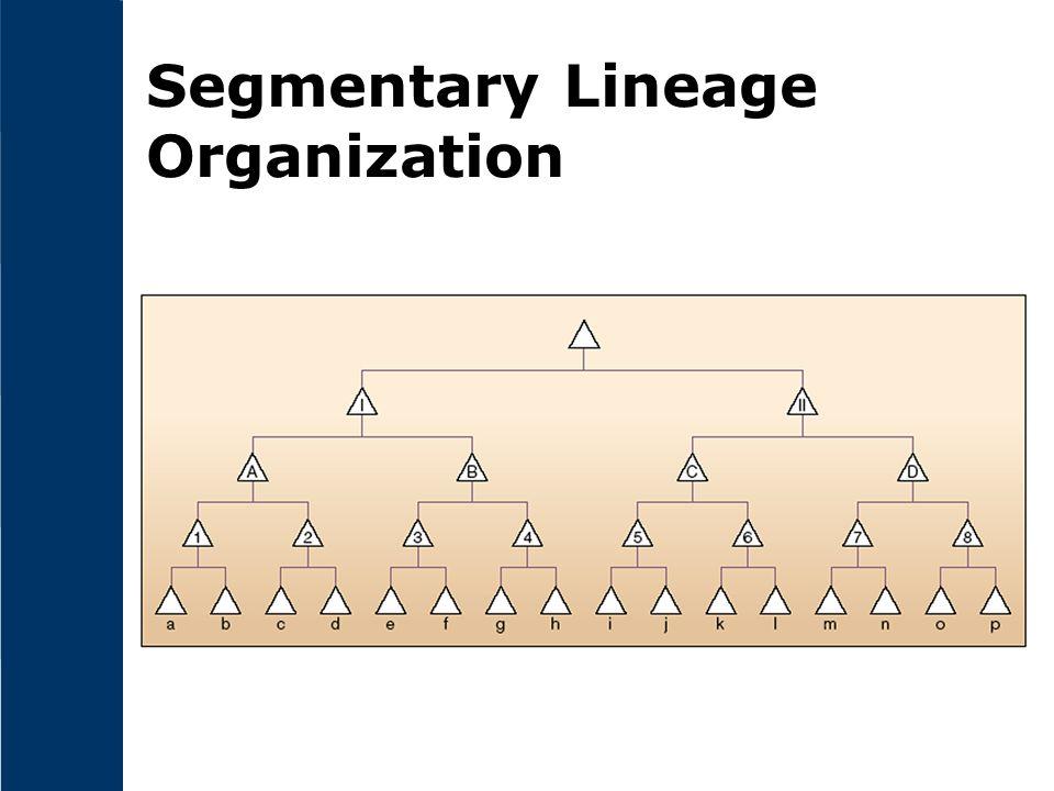 Segmentary Lineage Organization