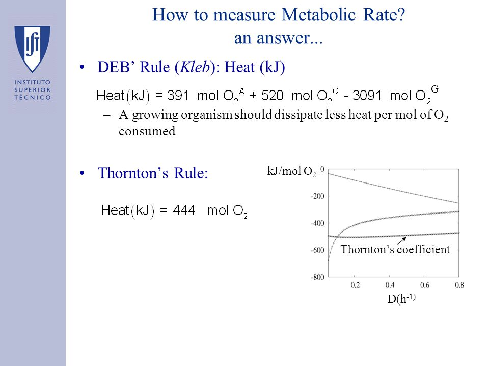 How to measure Metabolic Rate.an answer...