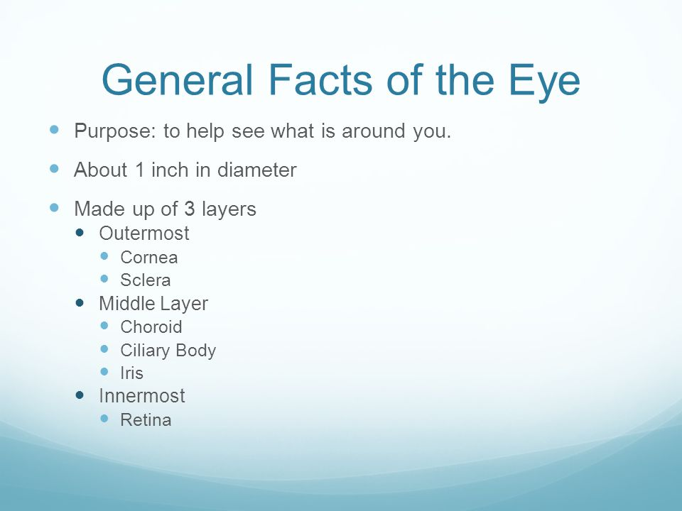 Cornea Clear, dome shaped surface that covers the iris, pupil, and anterior chamber.