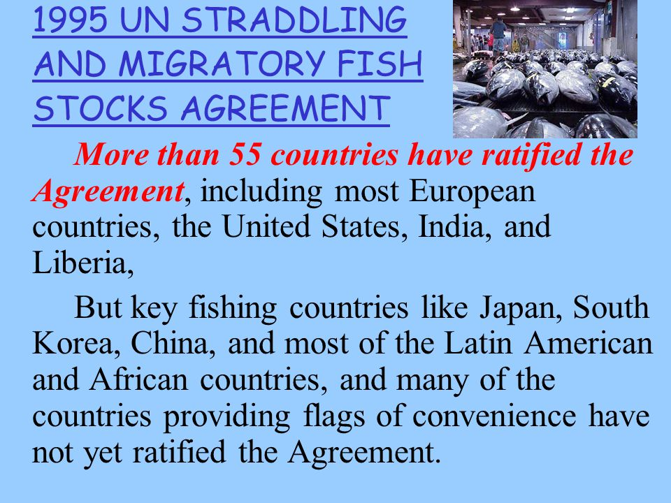 1995 UN STRADDLING AND MIGRATORY FISH STOCKS AGREEMENT More than 55 countries have ratified the Agreement, including most European countries, the United States, India, and Liberia, But key fishing countries like Japan, South Korea, China, and most of the Latin American and African countries, and many of the countries providing flags of convenience have not yet ratified the Agreement.