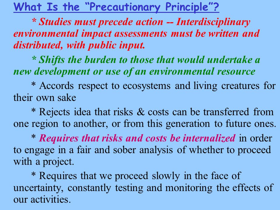 What Is the Precautionary Principle .
