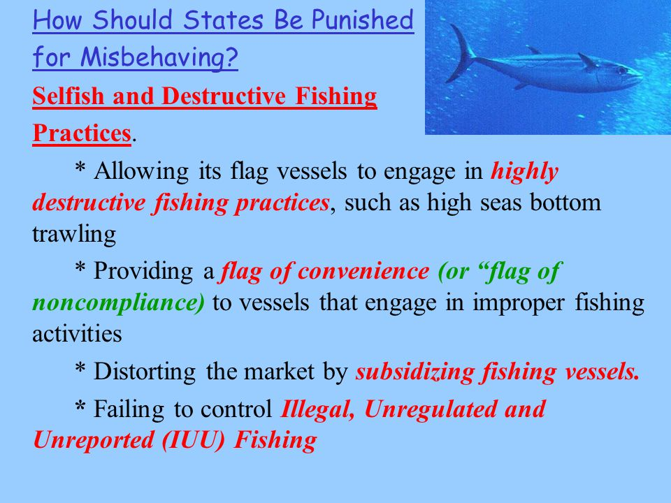 How Should States Be Punished for Misbehaving. Selfish and Destructive Fishing Practices.