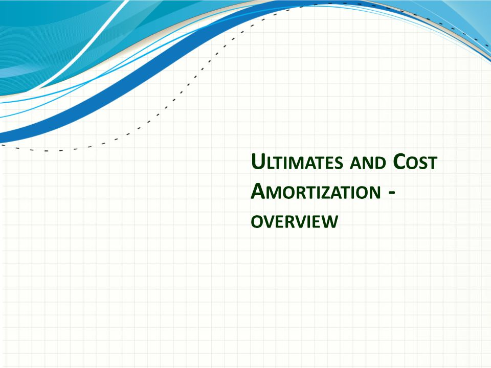 U LTIMATES AND C OST A MORTIZATION - OVERVIEW