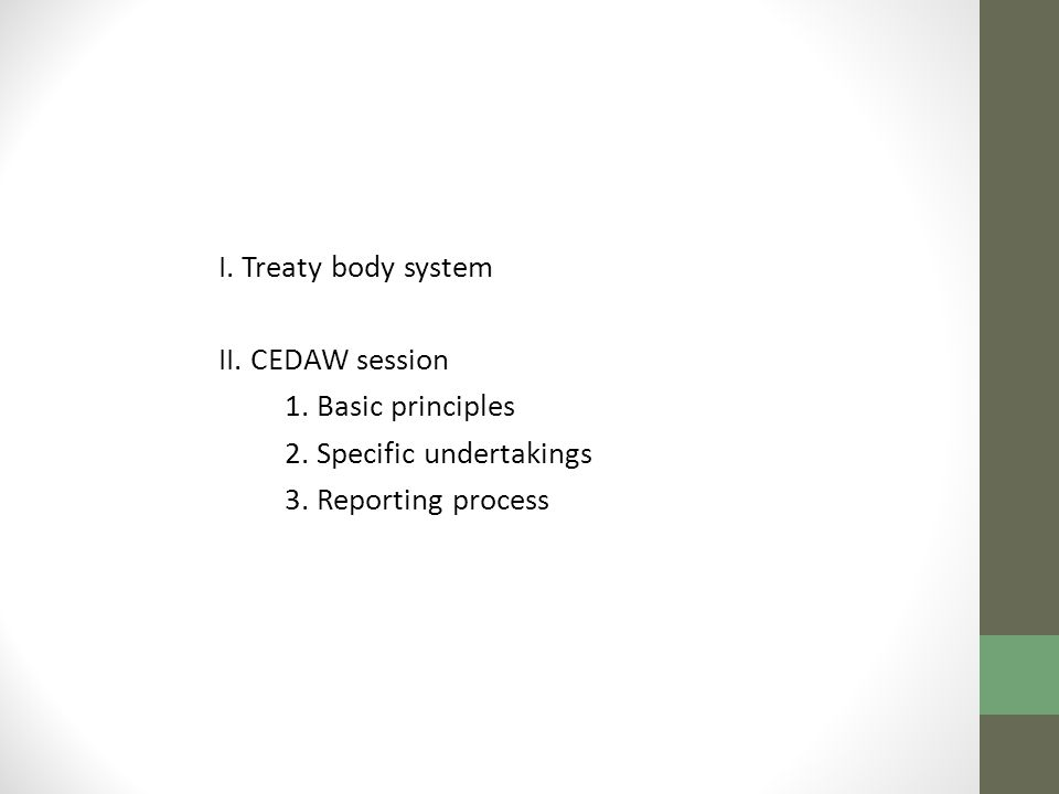 I. Treaty body system II. CEDAW session 1. Basic principles 2. Specific undertakings 3. Reporting process