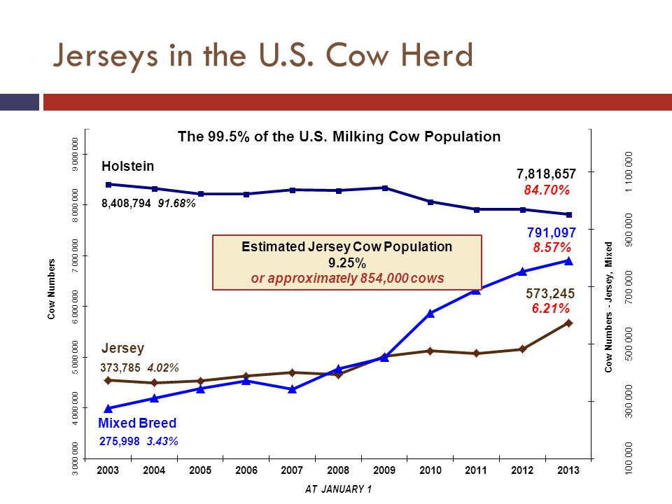 Jerseys in the U.S.