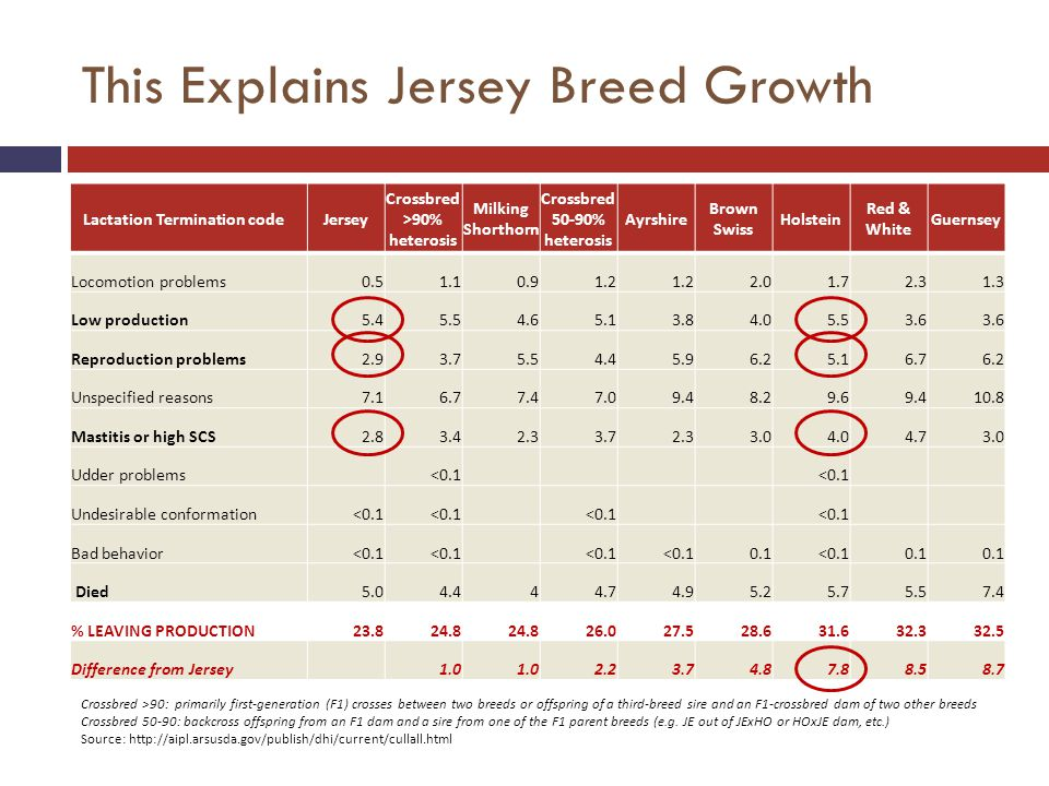 This Explains Jersey Breed Growth Lactation Termination codeJersey Crossbred >90% heterosis Milking Shorthorn Crossbred 50-90% heterosis Ayrshire Brown Swiss Holstein Red & White Guernsey Locomotion problems0.51.10.91.2 2.01.72.31.3 Low production5.45.54.65.13.84.05.53.6 Reproduction problems2.93.75.54.45.96.25.16.76.2 Unspecified reasons7.16.77.47.09.48.29.69.410.8 Mastitis or high SCS2.83.42.33.72.33.04.04.73.0 Udder problems <0.1 Undesirable conformation<0.1 Bad behavior<0.1 0.1<0.10.1 Died5.04.444.74.95.25.75.57.4 % LEAVING PRODUCTION23.824.8 26.027.528.631.632.332.5 Difference from Jersey 1.0 2.23.74.87.88.58.7 Crossbred >90: primarily first-generation (F1) crosses between two breeds or offspring of a third-breed sire and an F1-crossbred dam of two other breeds Crossbred 50-90: backcross offspring from an F1 dam and a sire from one of the F1 parent breeds (e.g.