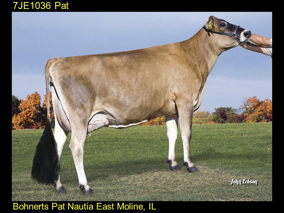 7JE1036 Pat Bohnerts Pat Nautia East Moline, IL