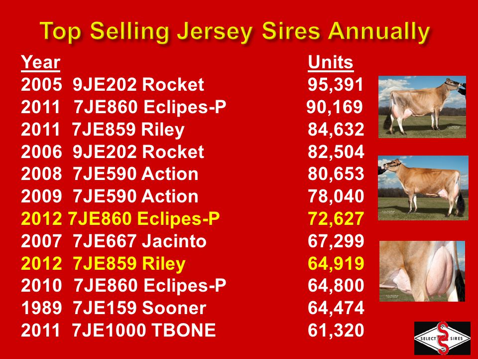 Source: December 2012 A/F Bulls Marketed in U.S.