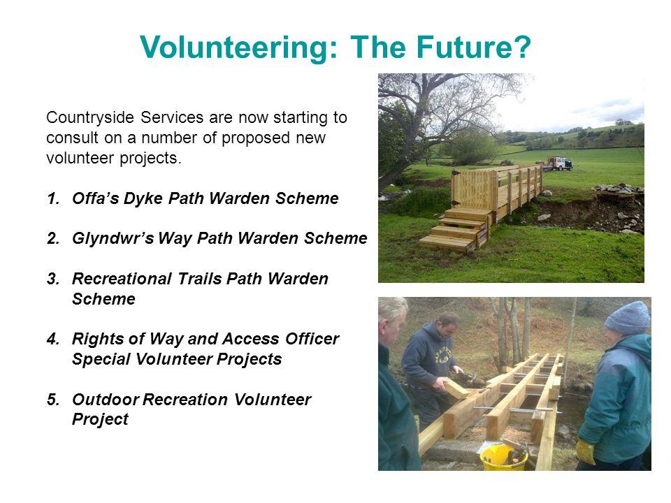 Volunteering: The Future.