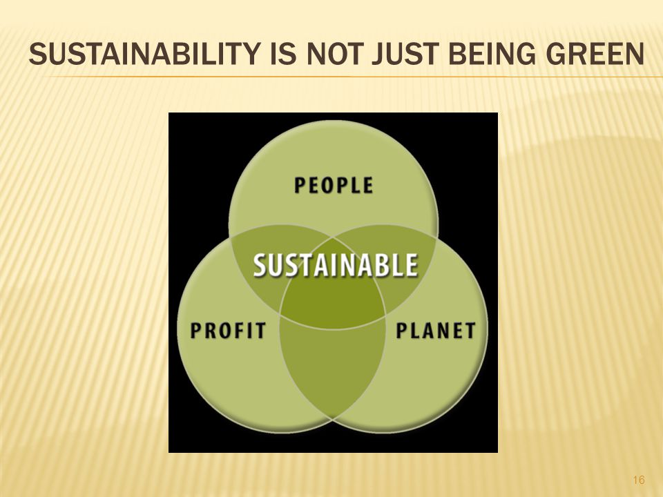 SUSTAINABILITY IS NOT JUST BEING GREEN 16