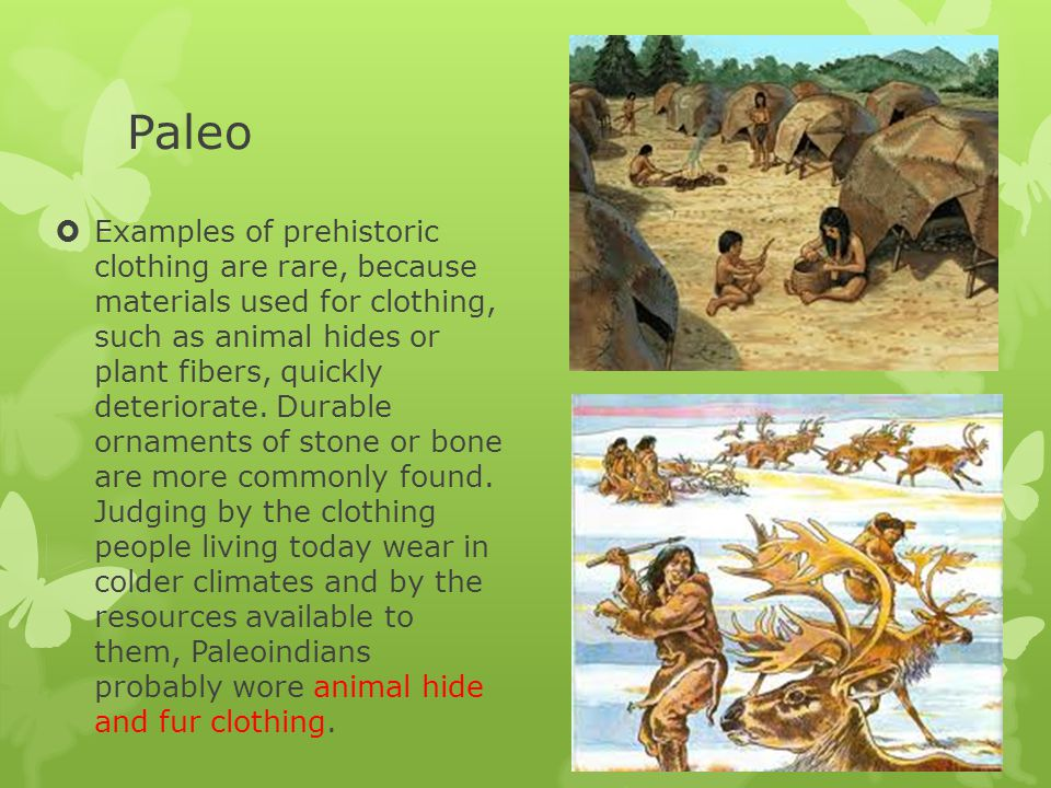 Housing  Paleoindians may have lived in skin tents, which they could easily transport.