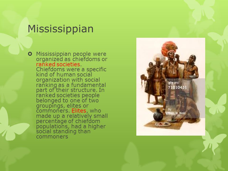 Mississippian  For example, the Natchez of Louisiana, who were still organized as a chiefdom during the early 1700s, believed that their chief and his immediate family were descended from the sun, an important god to the Natchez.