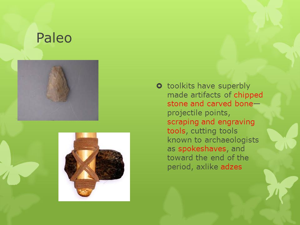 Paleo Indians Dates10,000 BCE to 8,000 BCE EnvironmentSea levels lower; temps.