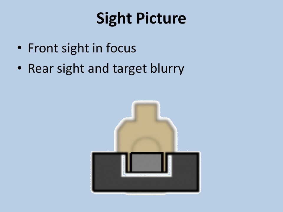 Sight Picture Front sight in focus Rear sight and target blurry